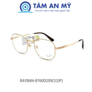 Rayban RB 8760D-209