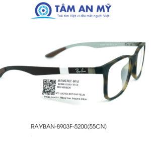 Gọng kính nam Rayban RB 8903F